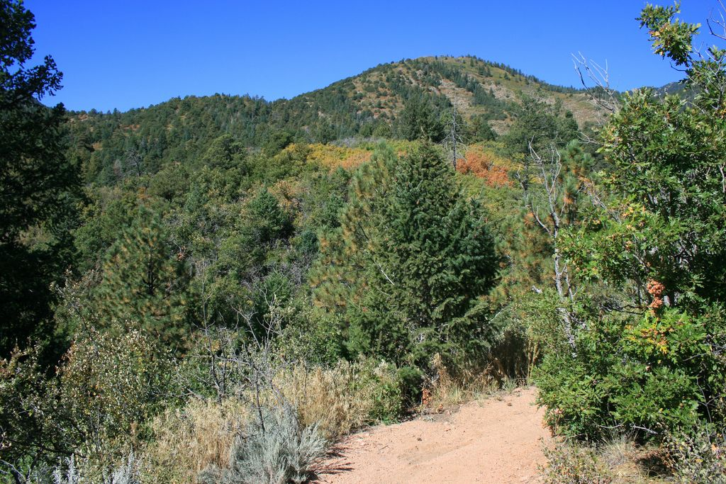 my hike to cheyenne mountain On saturday, october 21, nearly 300 people will gather in cheyenne mountain state park just outside of colorado springs for a truly unique trail race: the cheyenne mountain run.