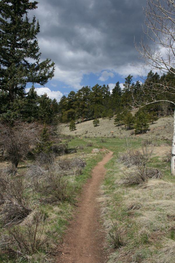 Stanley Canyon Trail